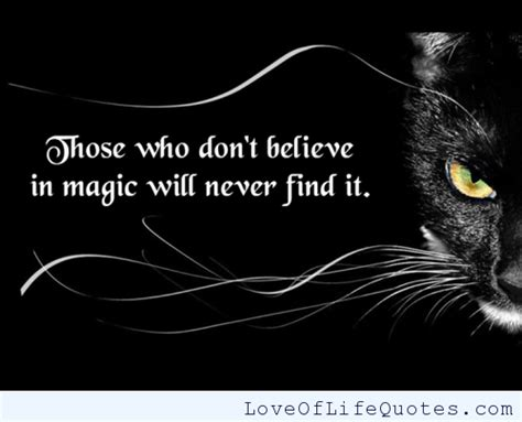 Who Never Find 63 Best Magic Quotes And Sayings