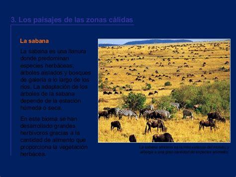 imagenes de paisajes de zonas calidas paisajes y biomas del mundo
