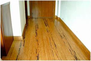 Bamboo Flooring Prices Knowing Bamboo Flooring Cost Best Home Decor Ideas