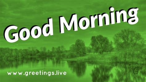 greetingslivefree daily  pictures festival gif images excellent good morning wishes