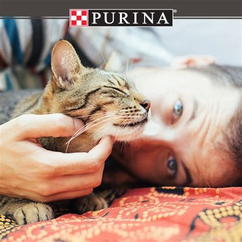 Pure Love For Pets Sweepstakes - 23 best images about sles freebies on pinterest trip to new zealand new new