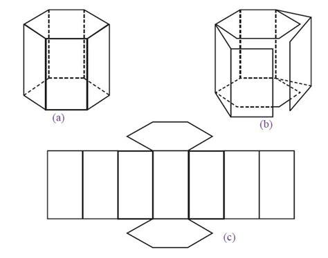 Celengan Jaring contoh cara membuat jaring jaring primas dan limas