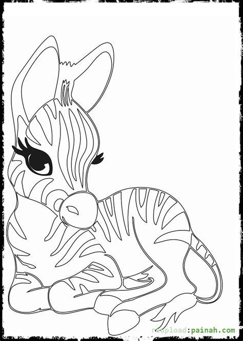 baby zebra coloring page baby zebra coloring page www pixshark com images
