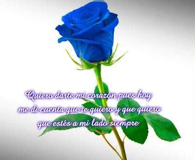 imagenes de rosas azules con frases de amor im 225 genes de rosas azules con frases bonitas para dedicar