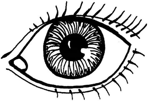 printable coloring pages eyes eye coloring page free download best eye coloring page