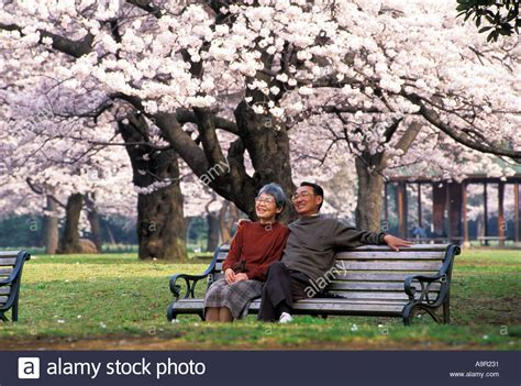 old couple on bench lovely old japanese couple sitting on wooden bench