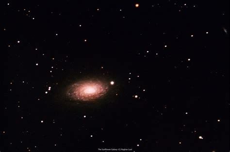 sunflower galaxy astronomy at soulitude in the himalayas