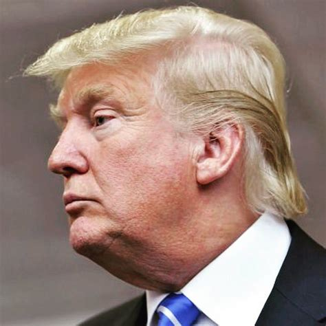 donald hair diagram donald s hair on quot in honor of