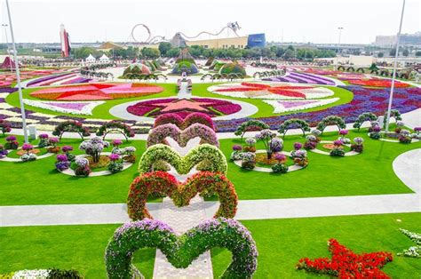 dubai miracle garden world flower garden