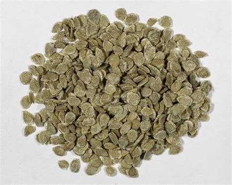 best tomato seeds heirloom black krim tomato seeds ndg botanicals