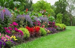 Gardening Pictures 10 Tips For Growing A Stunning Organic Flower Garden On A