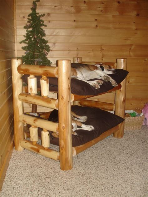 Bunk Bed For Dogs Best 25 Bunk Beds Ideas On Pinterest