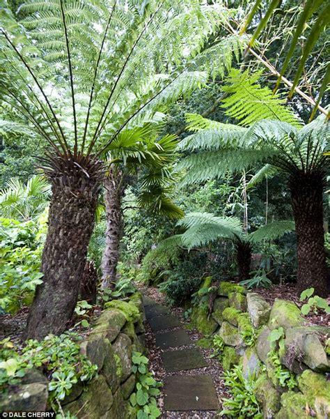 suffolk villager andrew brogan transforms garden into a
