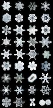 Bentley Snow Crystals Snowflake Library The Bentley Collection