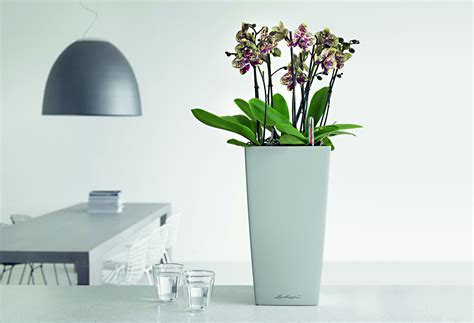 lechuza cubico  watering planter metropolitan