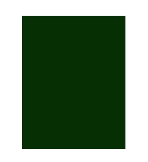 dark green chalkboard blackboard paint 250ml