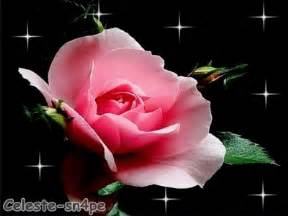lmagenes de corazones en agua con rosas y aves im 225 genes de amor con movimiento corazones rosas flores