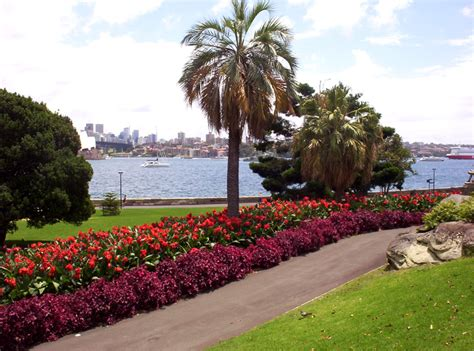 Royal Botanical Gardens Sydney View Of Harbour Sydney Royal Botanical Gardens Designedbynatalie Design Photography