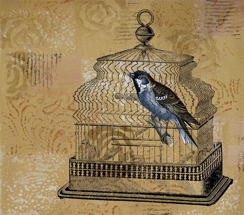 Bird In A Cage linsart bird in a cage if rs 34 36