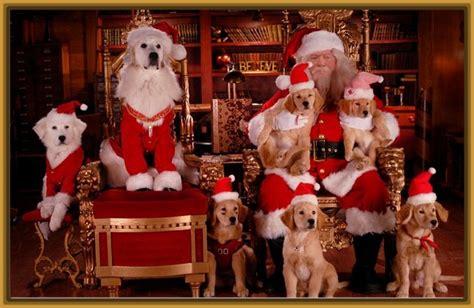 imagenes de animales navidad imagenes de perros en navidad para imprimir imagenes de