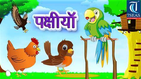 5 Drawing Artist Information In Marathi by Learn Types Of Birds Animated For