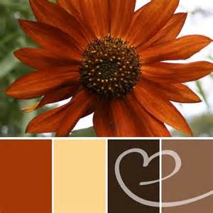 colors that go with burnt orange 55 best images about basement top picks on