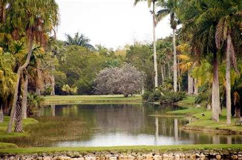 Fairchild Tropical Botanical Gardens Miami Visions Of Miami Botanical Garden