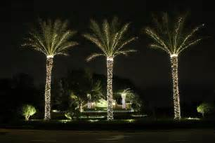 zimmermantreeservice com gt services gt holiday lighting