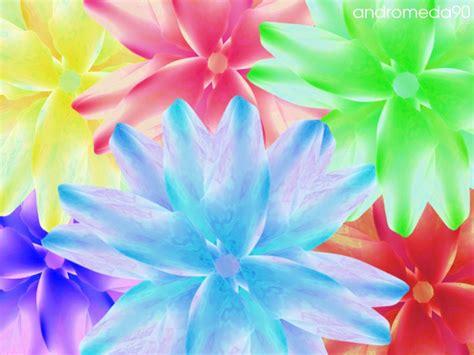 bright colored flowers bright colored flowers wallpaper 1920x1080 66302