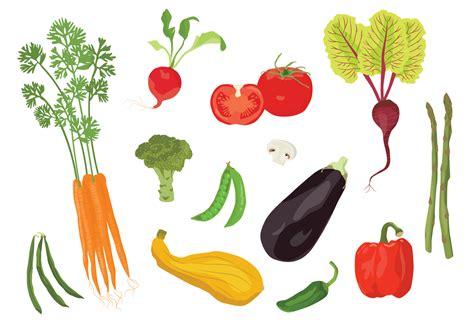 By Veggies vector veggies free vector stock graphics