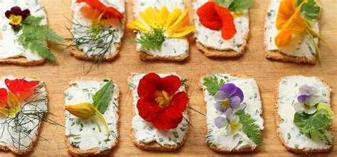 fiore commestibile fiori commestibili quali mangiare vivo di benessere