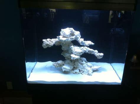aquascaping reef tank minimalist aquascaping page 64 reef central online community aquarium