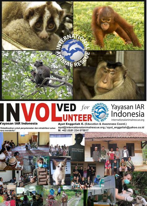 formulir volunteer yayasan iar indonesia