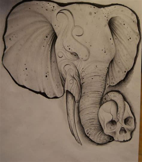 elephant skull tattoo 109 best images about elephants drawings on