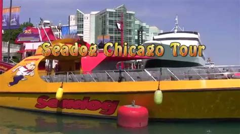 chicago boat tour with dog seadog tours chicago youtube