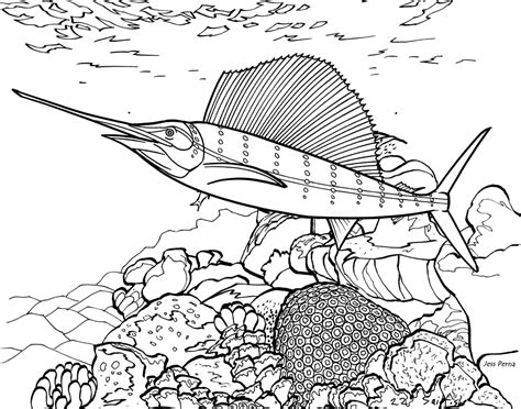 reef fish coloring pages realistic coloring pages