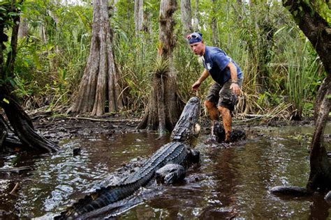 airboat rental miami everglades airboat tours 1 fort lauderdale bus charter