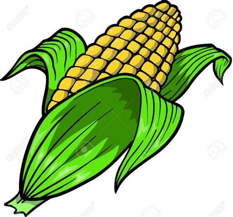 clipart illustrations corn clipart clipartion