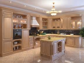 Ideas For Kitchen Cabinets by Home Decoration Design Kitchen Cabinet Designs 13 Photos