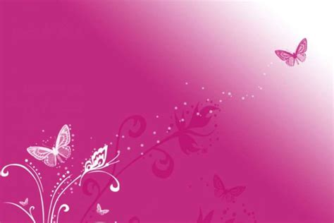 pink designs pink butterfly vector background hd wallpaper vector