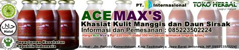 Ace Maxs Baru obat hernia cara pengobatan penyakit hernia yang tepat