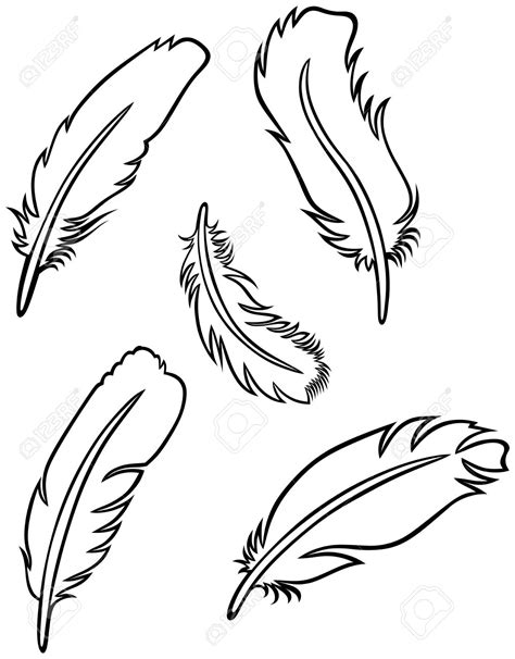 Drawing Vectors by Line Drawing Feather At Getdrawings Free For
