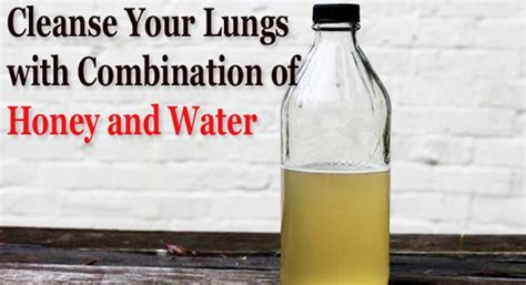 How To Detox Your Lungs With Honey by Healing Power Of Honey And Water Combination