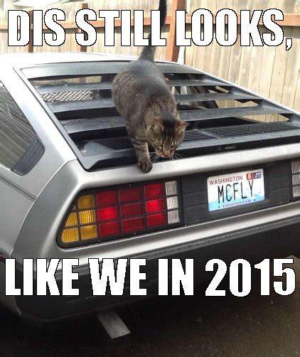 The Future Meme - maze splatt cat splatt for mobile casino jackwildscasino com
