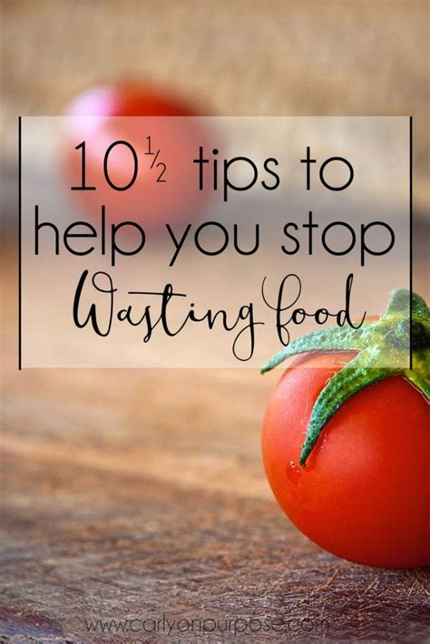 9 Tips To Help You Quit by 10 1 2 Tips To Help You Stop Wasting Food To Be The O