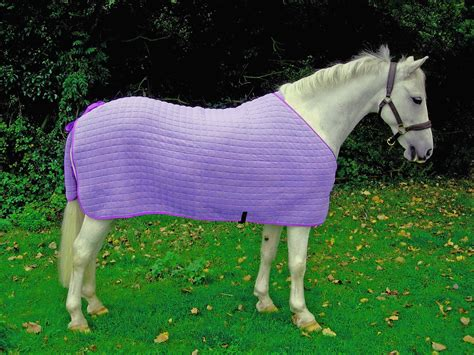 Pony Rug by Thermatex Pony Multi Purpose Quilted Wicking Rug