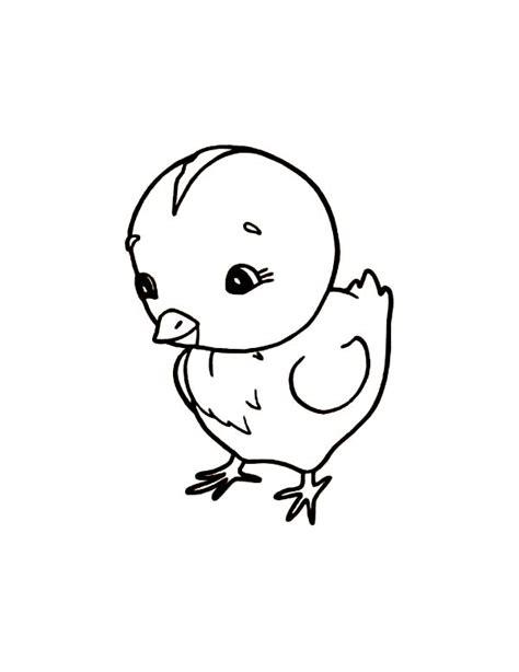 chicken coloring page chicken coloring pages with little baby chick cute chicken coloring pages