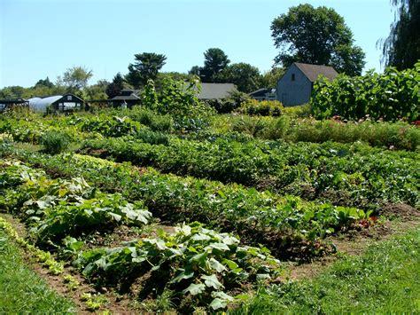 Garden Farms by Vegan On A Budget