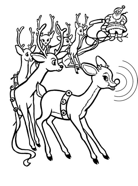 eight reindeer coloring page reindeer color page az coloring pages