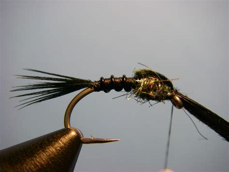 black nymph pattern early black stonefly nymph step 6 current works guide